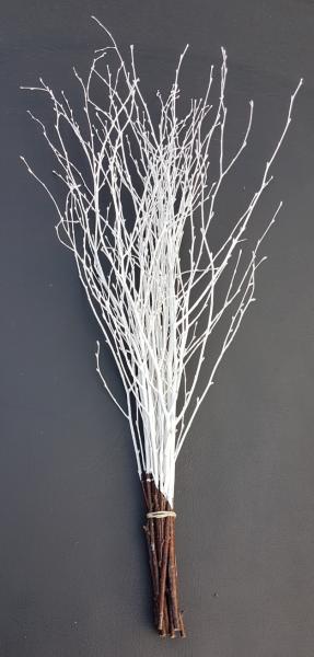 Trockenblumen - Birke - Weiß