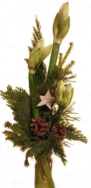 winterlicher Blumenstrauß weiße Amaryllis frische Tanne zu Weihnachten Advent Weihnachtsdeko Stern