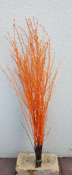 Trockenblumen - Birke - Orange