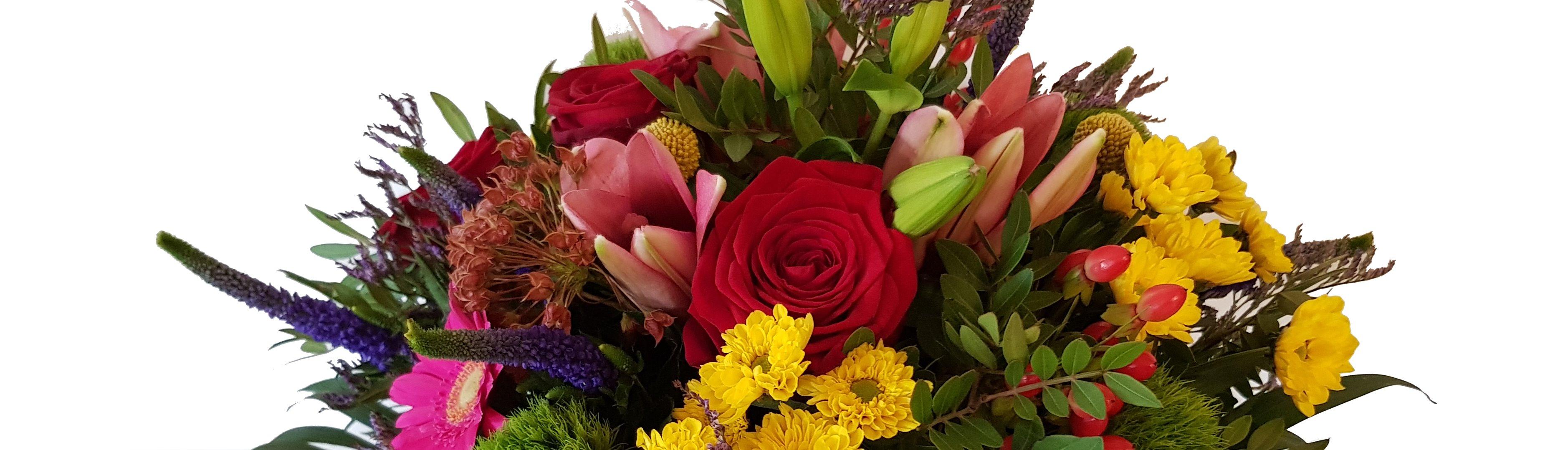 Blumen ganzjährig