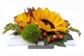 Blumengesteck ☸ Blumenkurier ☸