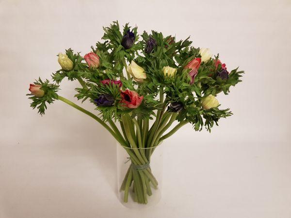 bunter Blumenstrauß aus Annemonen, jetzt bei www.flora-trans.de