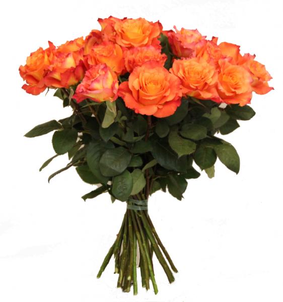 Rosenstrauß ❀ Amore ❀