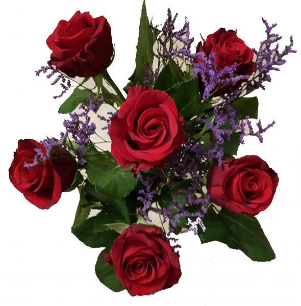 Rote Rosen versenden - Rosen zum Geburtstag - Blumenstrauß mit 1A Super schönen Rosen