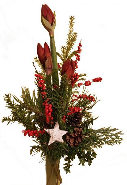 adventlicher Blumenstrauß rote Amaryllis frische Tanne zu Weihnachten Weihnachtsdeko Stern