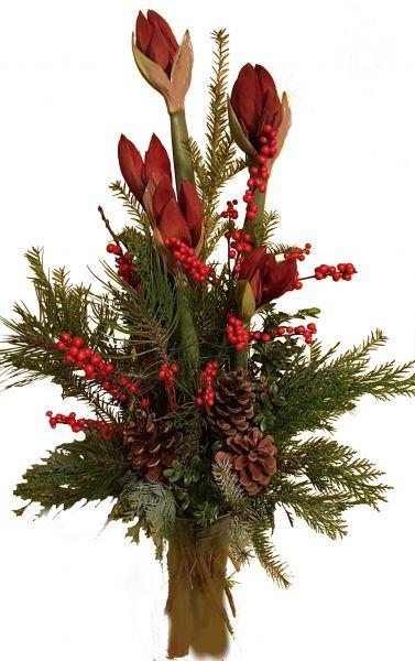 adventlicher Blumenstrauß rote Amaryllis frisches Grün zum Advent zu Weihnachten