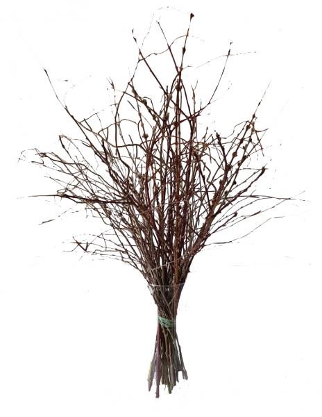 Osterstrauß mit Zweigen