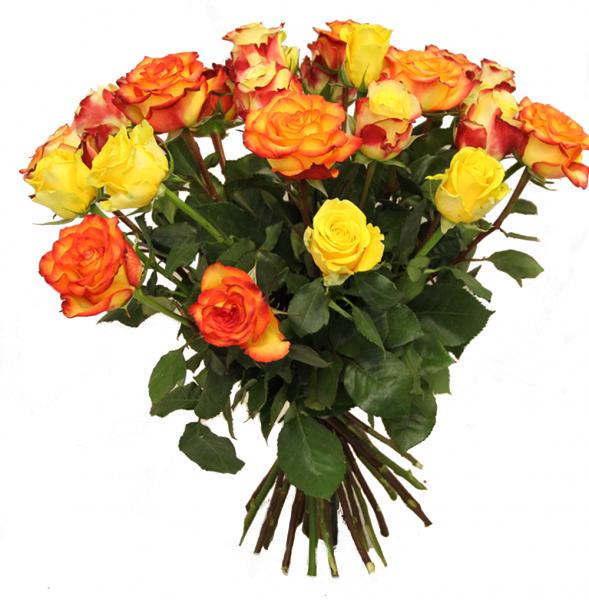 ✼ Floralen Küsse ✼