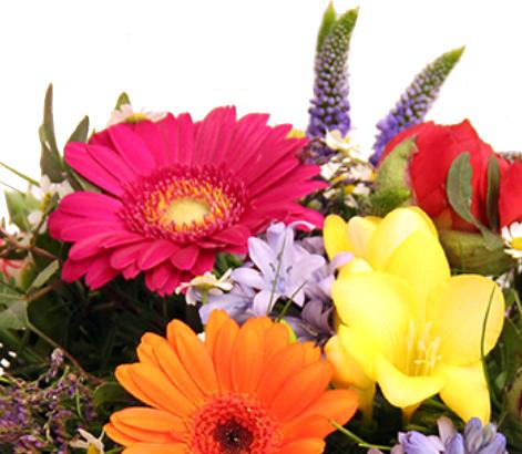 Bunter Blumenstrauß ❀Farbenspiel
