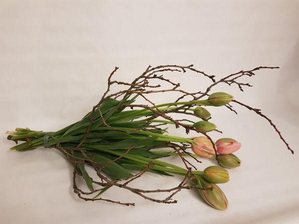 Französische Tulpen ,, Blumenstrauß Tulipa,, jetzt bei www.flora-trans.de bestellen