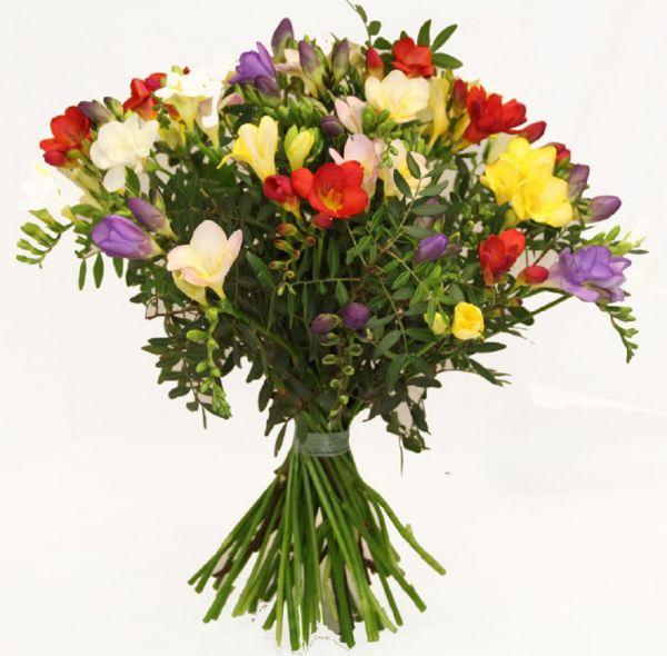 Freesienstrauß - Blumenstrauß mit Freesien