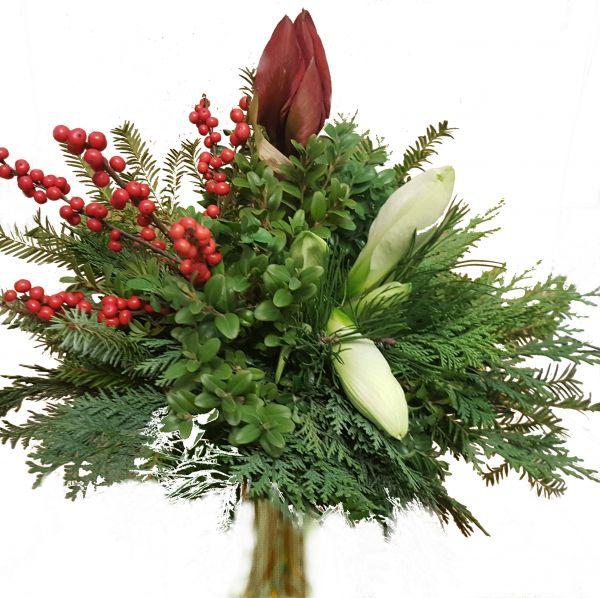 adventlicher Blumenstrauß rote Amaryllis weiße Amaryllis frisches Grün zum Advent zu Weihnachten