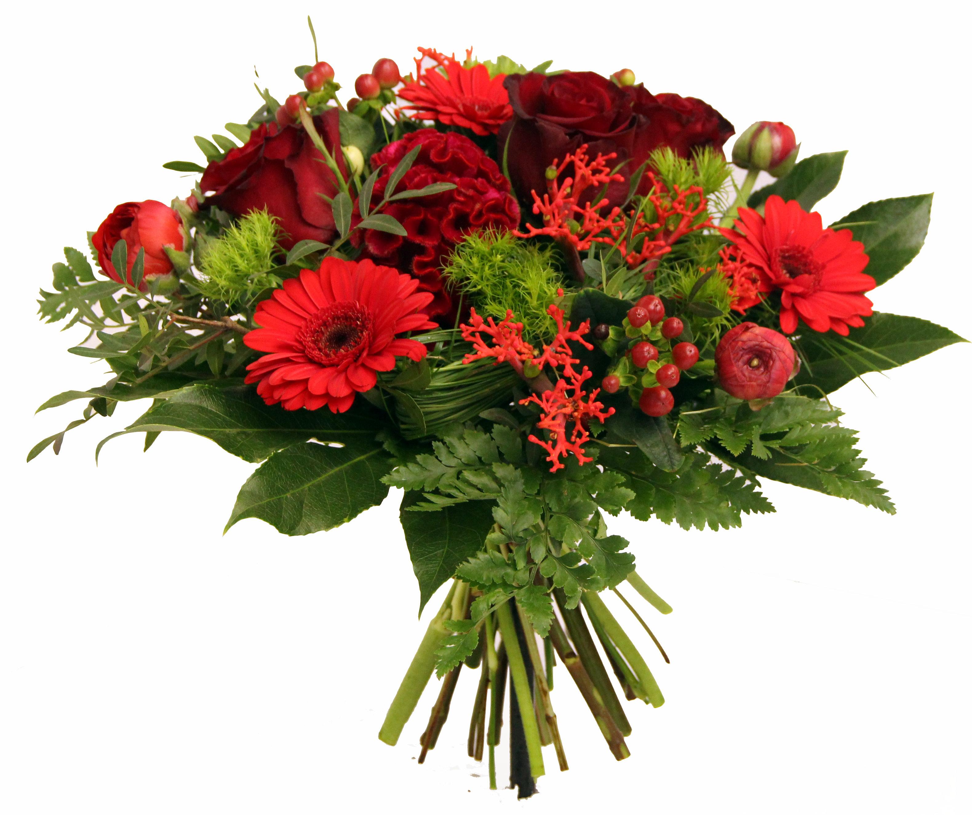 blumenstrau lieferung pure liebe rote rosen xxl top qualit t zum wunschtermin alle. Black Bedroom Furniture Sets. Home Design Ideas