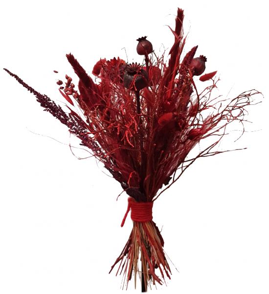 Trockenblumen -young style- in rot